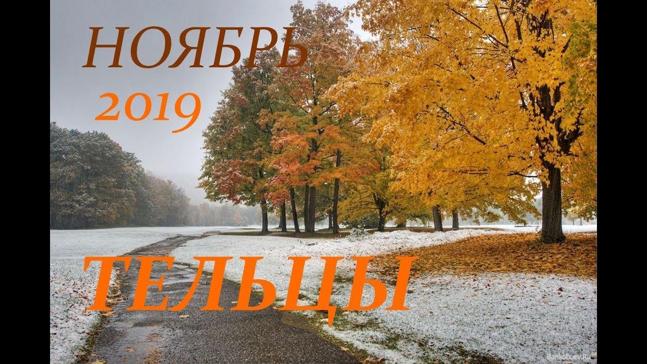 ТЕЛЕЦ. САМЫЙ ПОДРОБНЫЙ ПРОГНОЗ на НОЯБРЬ 2019 г.