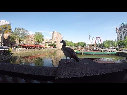 Road Trip - Netherlands: Rotterdam - Amsterdam 2017 (GoPro Hero 5)
