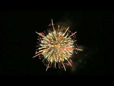 2010 全国新作花火競技大会 No.23「煌めきの大輪菊」 菊屋小幡花火店