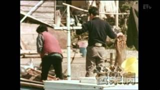 今日のテーマは、「公害」。 ○今から60年ほど前、日本は「高度経済(け...