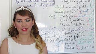 Arabic Grammar: verb-subject agreement - Lesson 47