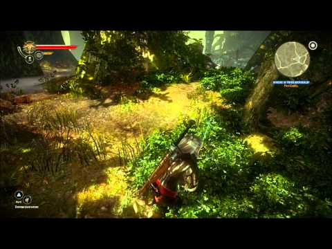 Let's Play The Witcher 2 - Part 44: Finding Cedric!