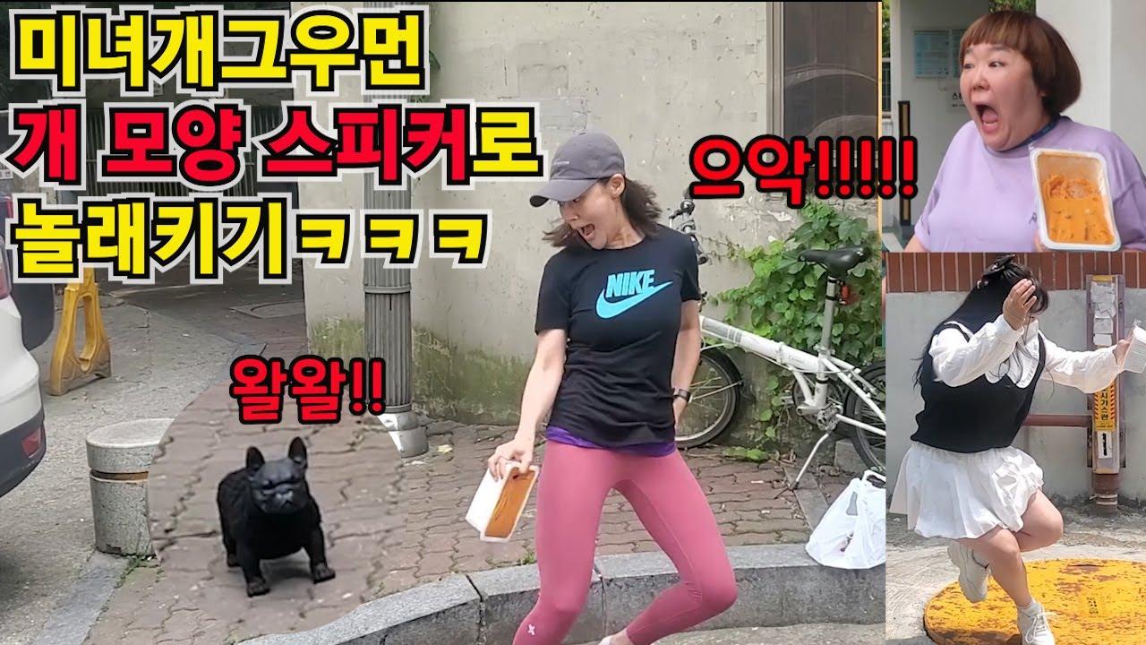 [몰카]미녀개그우먼?개 모양 스피커로 놀래키기ㅋㅋㅋ레알 찐반응!!(FEAT.욜로코믹스)