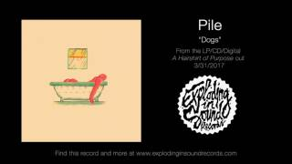 "Dogs"" by Pile from their upcoming LP, ""A Hairshirt of Purpose"" out ..."