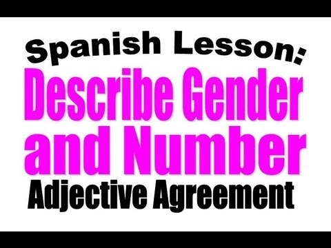 Spanish Adjectives Adjectives To Describe Gender And Number Youtube