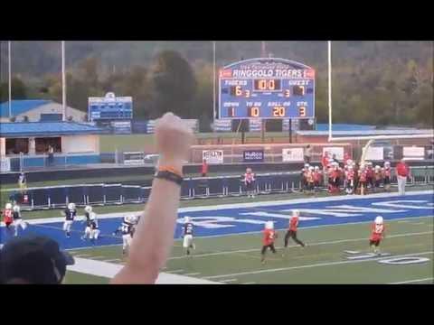 Dalton Georgia LIL CATS 2016 SEASON HIGHLIGHTS