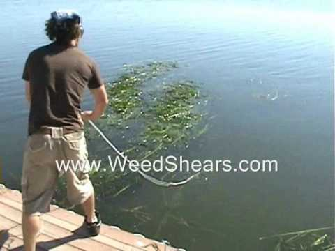 V Shaped Cutter for Removing Lake and Pond Weed for hydrilla milfoil cattails lily pads