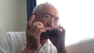 """Bituing Marikit"" in Abm/G played in Swan 1248 C Harmonica"