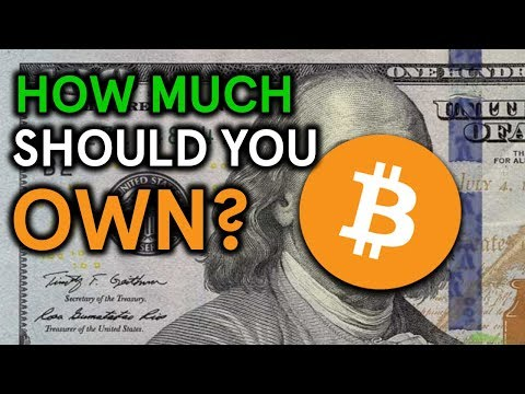 How Much Bitcoin Should You Own?
