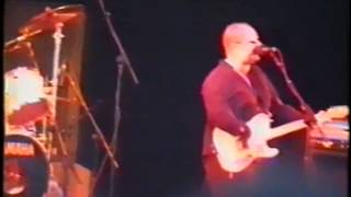 Frank Black and the Catholics live @ reading festival 26-08-1994
