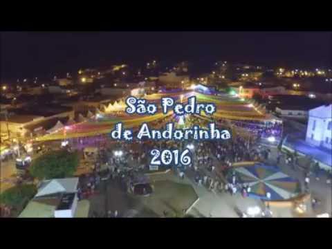 Andorinha Bahia fonte: i.ytimg.com