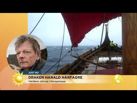 Draken Harald Hårfagre har nått fram till Kanadas kust - Nyhetsmorgon (TV4)