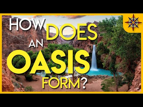 How Does An Oasis Form?