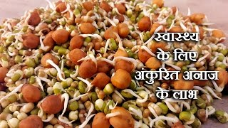 Sprouts Benefits For Health In Hindi By Sonia Goyal- अंकुरित अनाज के लाभ @ jaipurthepinkcity.com