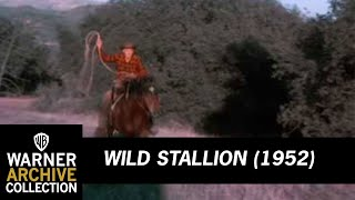 Wild Stallion (Preview Clip)