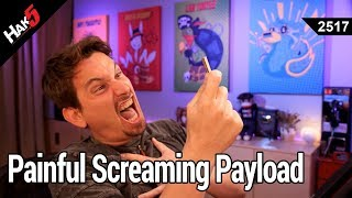 Painful Screaming Payload of DOOM - Hak5 2517