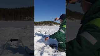 Один из дней подледной рыбалке на Усть Илимском водохранилище