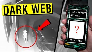 We bought a MYSTERY PET from the DARK WEB and it ATTACKED US!!