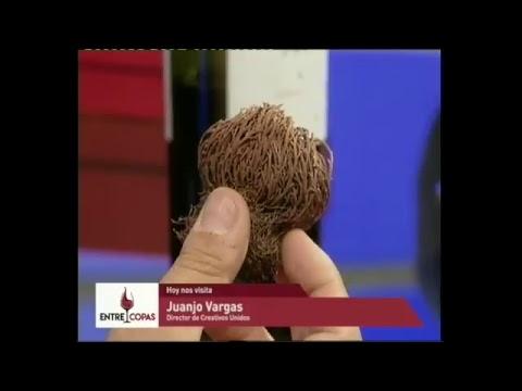 Transmisión en directo de Canal C. Desde Córdoba. Argentina