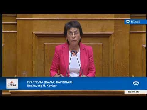Βαγιωνάκη για τη νομική αναγνώριση ταυτότητας φύλου: Συνταγματική επιταγή η προστασία των δικαιωμάτων (βίντεο)
