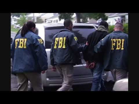 What Five 'Domestic Terrorism' Cases Tell Us About FBI Tactics