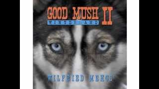 CD Vorstellung Good Mush II Wilfried Mengs