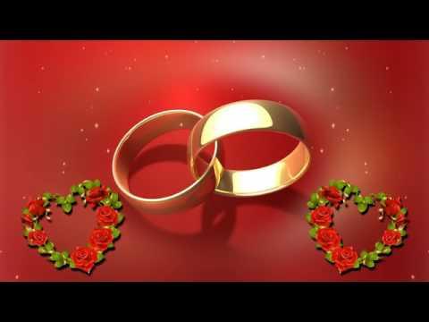 Video Background Hd Happy Wedding Rings 3 Hd Youtube