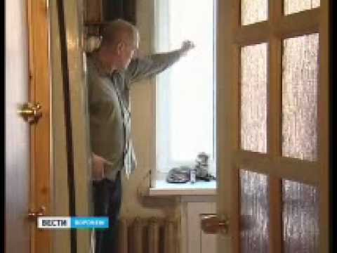 В Воронеже живет пятиухая кошка
