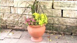 Gardening Tips - Container Gardening