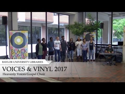 Voices and Vinyl 2017