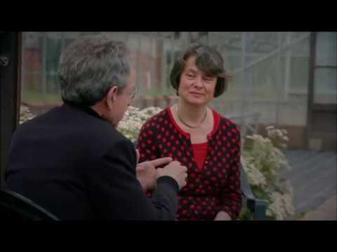 Sarah Coakley - Alternative Concepts of God