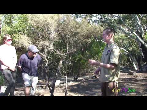 Australia Walkabout Wildlife Park Aboriginal Experience