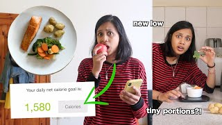 i ate my recommended calorie intake for 24 hours | clickfortaz