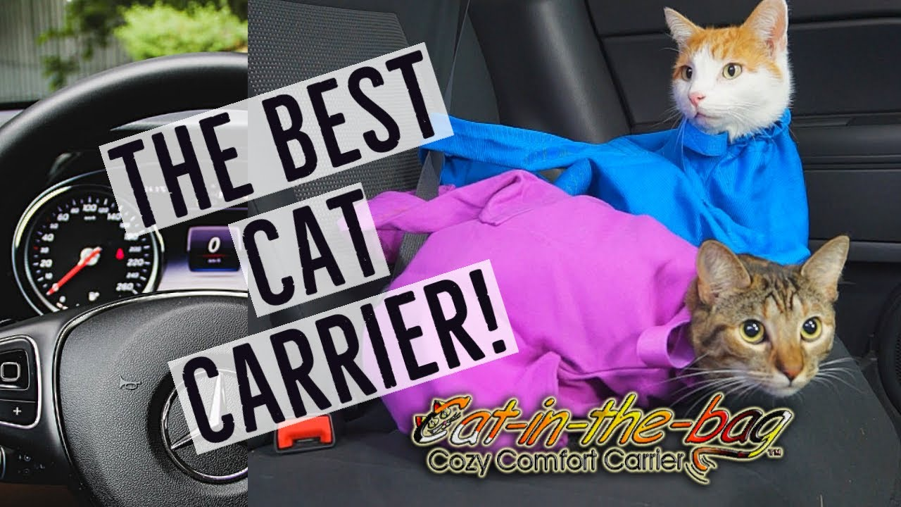 4896345113 Cat Bag Carrier Doubles as 'Snuggie' For Cats