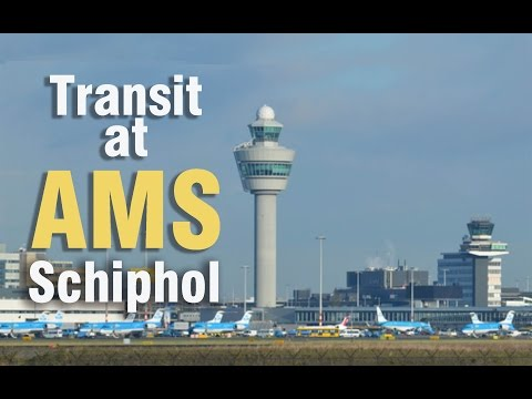 Transit at Amsterdam Schiphol Airport | Gates C to gates F