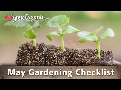 May Gardening Checklist: 19 Tips to Keep Your Organic Garden Healthy in May - 동영상