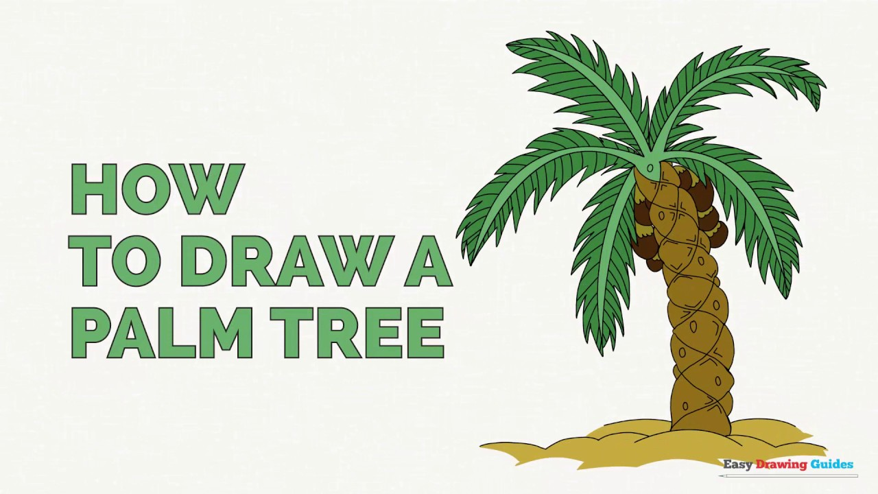 Uncategorized How To Draw A Palm how to draw a palm tree easy step by drawing tutorial youtube tutorial
