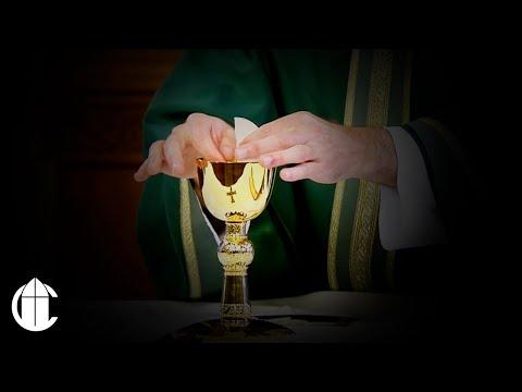 Catholic Mass: 9/19/19   Thursday of the Twenty-Fourth Week in Ordinary Time