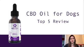 Top 5 CBD Oil for Dogs - SAFE CBD Oils For Your Pet!