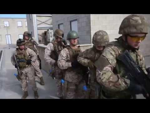 43 Commando CQB Training - www.eliteukforces.info