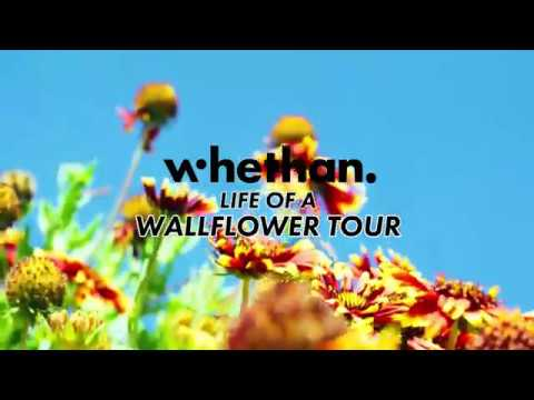 Whethan - Life Of A Wallflower Tour Trailer Mp3