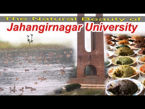 The Natural Beauty Of Jahangirnagar University   Migratory Birds   Lunch At Bottola   Otithi Pakhi
