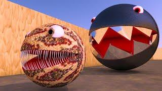 Chain Chomp Pacman Vs Monster Pacman Crazy Battle