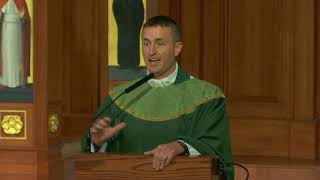 Fr. Michael Plona's Homily on the 15th Sunday in Ordinary Time