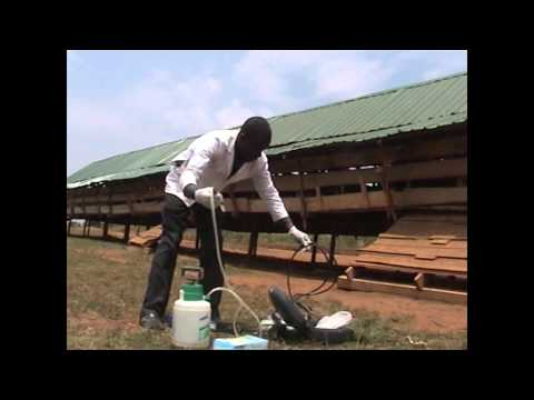 VTS 01 1; Caprine estrus synchronisation in Uganda by Dr. Herbert Mukiibi