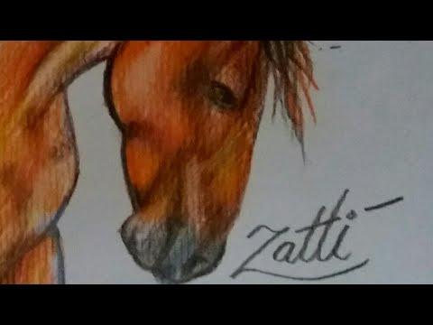 Cavalo Realista Desenho Youtube