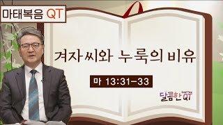 달콤한 QT 김흥규목사의 마태복음 묵상 6: 겨자씨와 누룩의 비유 (마태복음 13:31-33)