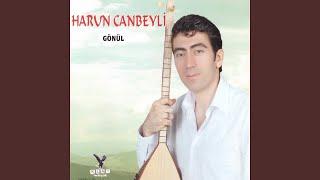 Harun Canbeyli - Le Rinde
