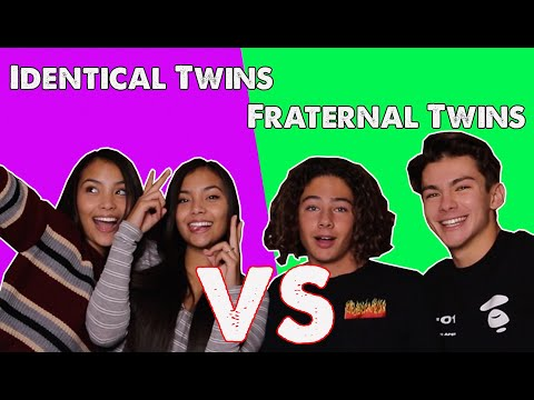 How you can Know If Twins Are Similar or Fraternal