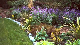 Garden Borders I Garden Borders And Edging Ideas